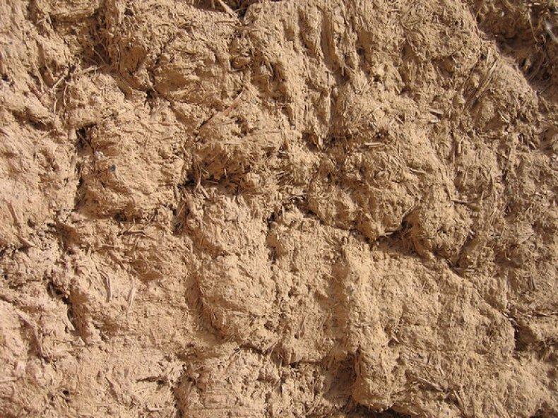 Суглинистые почвы