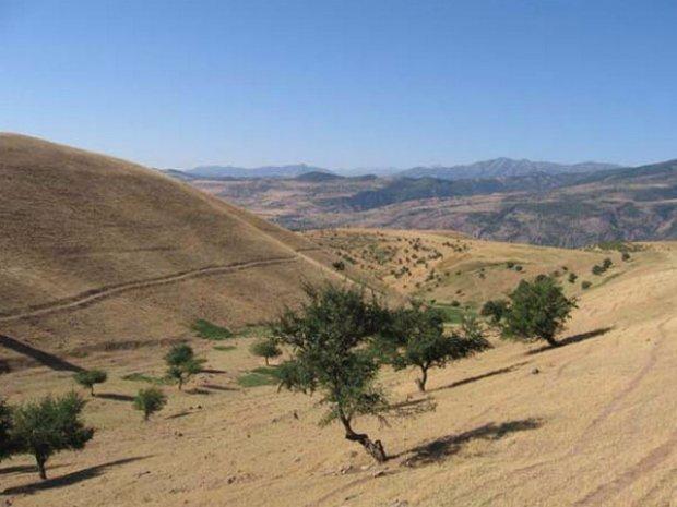 Виды почв и их характеристика