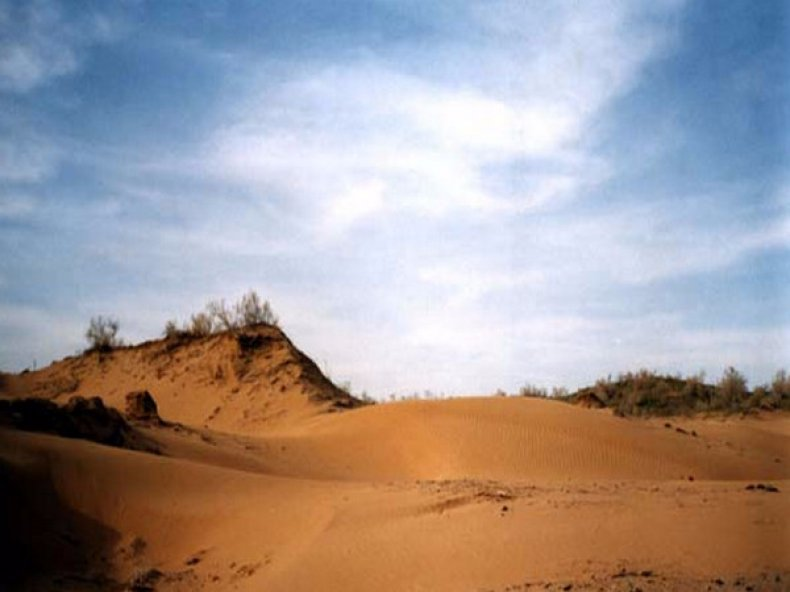 Песчаные почвы