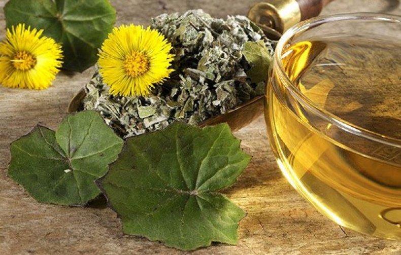 Как выбрать лекарственные растения :