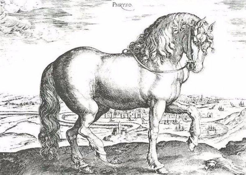 фризский, лошадь, описание, фото, период походов