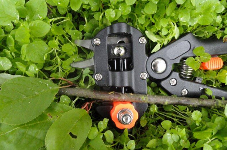 прививочный, секатор, инструмент работы, инструмент работы саду, работы саду, говорит практика