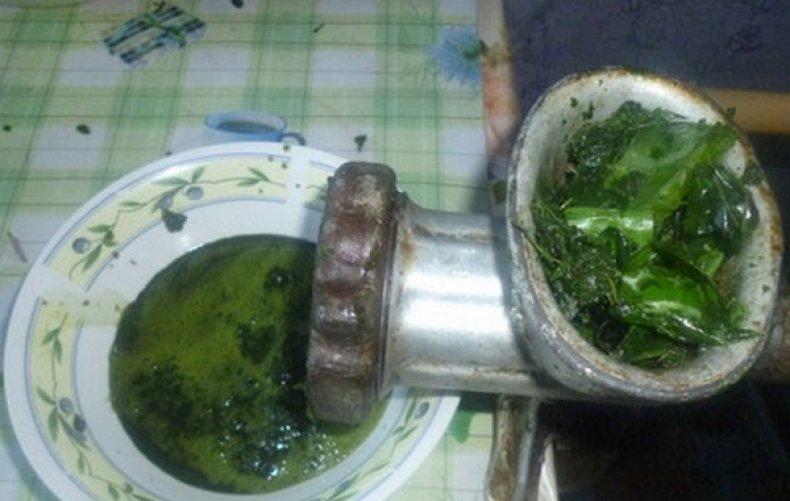 Сок из листьев расторопши