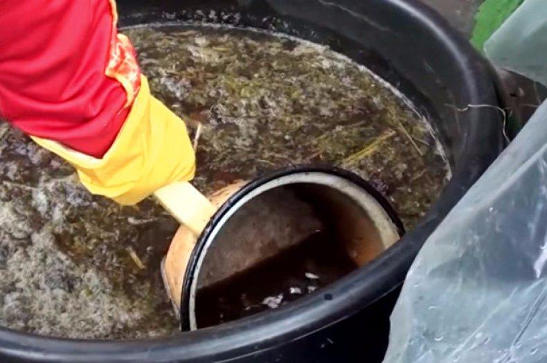 Жидкая подкормка