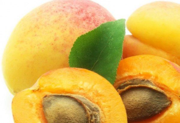 Процедура обрезки абрикосовых деревьев летом