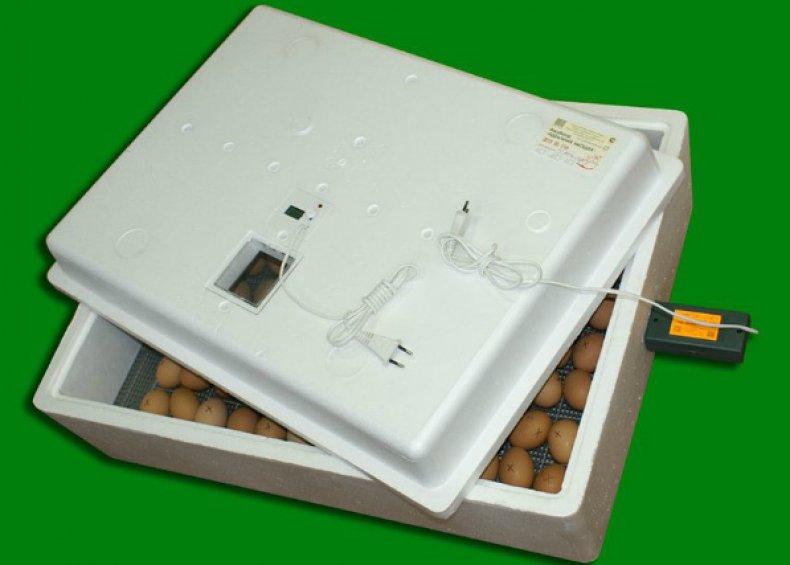 инкубатор, яйцо, сельскохозяйственных птиц, каждые часа, Преимущества инкубатора, «Совершенная наседка»