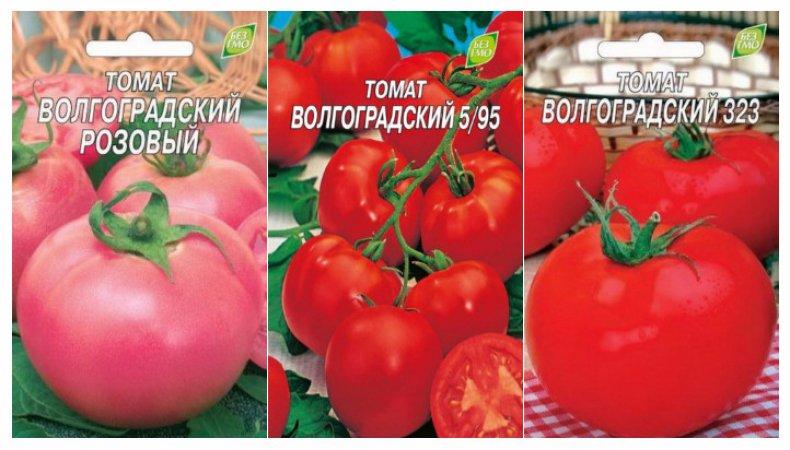 Волгоградские томаты