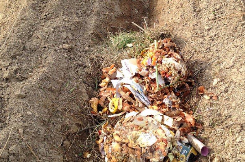 Укладываем органические отходы
