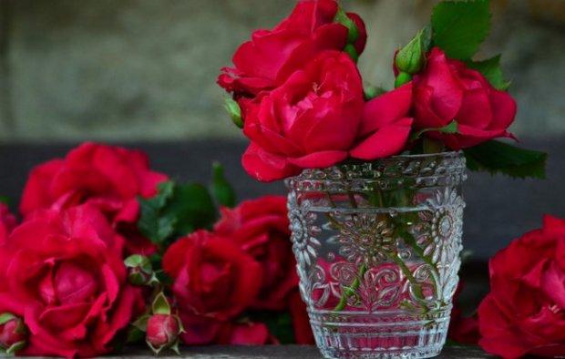 Как розы сохранить подольше