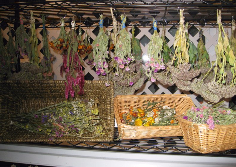 Как сушить сухоцветы
