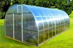 теплица, поликарбоната, прозрачного пластика, вертикальными поверхностями, вертикальными поверхностями стен