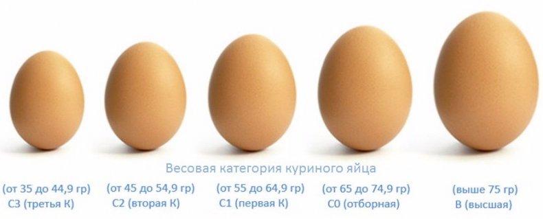 Весовая категория яиц