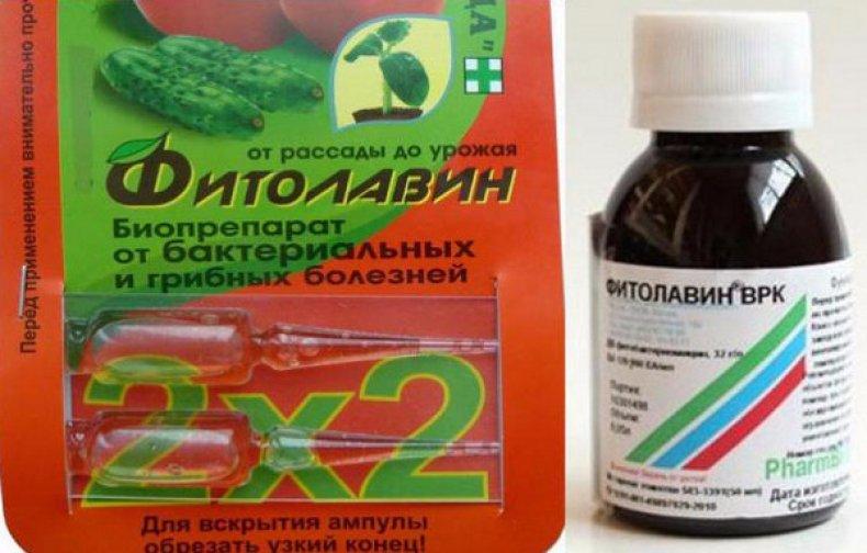 фунгицид, фитолавин, описание, инструкция