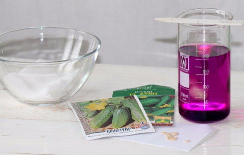 Обработка семян марганцовкой