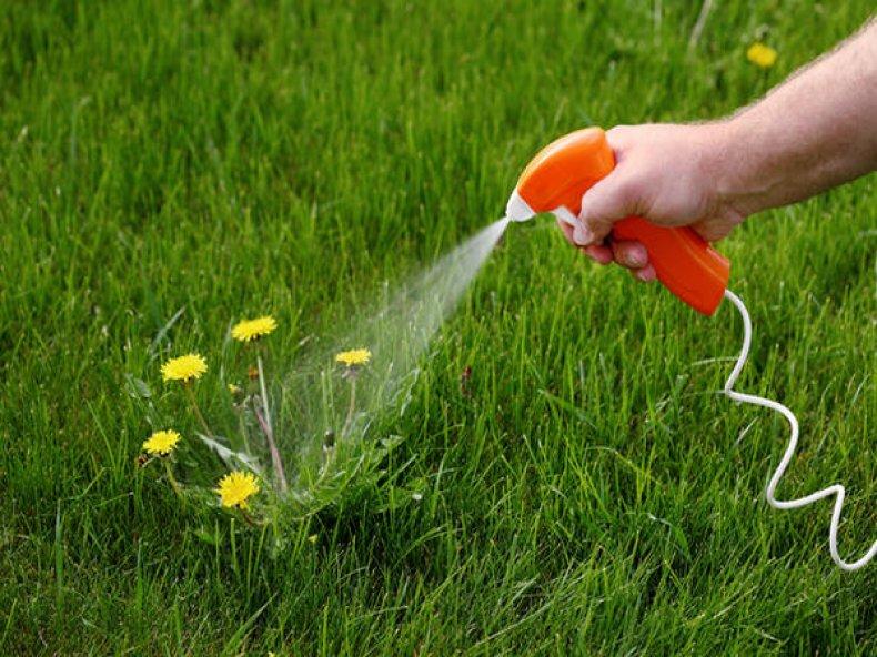 Опрыскивание гербицидом