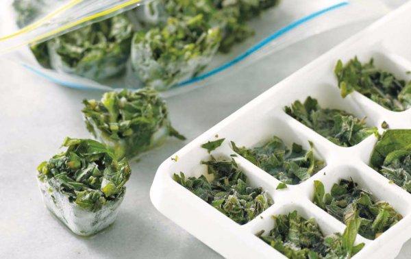 Как заморозить петрушку на зиму в холодильнике: можно ли заморозить зелень, как правильно