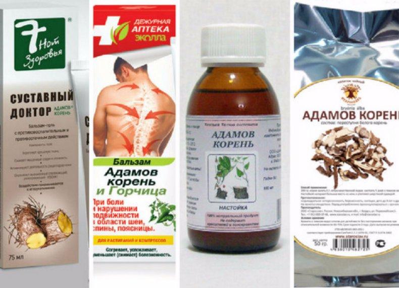 Адамов корень (тамус обыкновенный) применение в народной медицине, рецепты