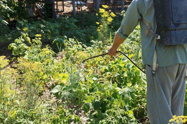 Ширлан, СК - - средства защиты растений