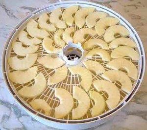 Лучше всего сушить яблока в специальных сушилках