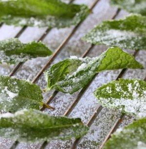 Как хранить мяту на зиму в домашних условиях