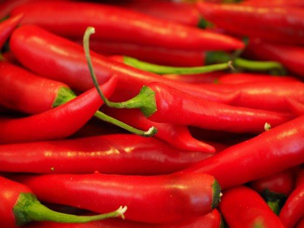 Красный острый перец - полезные свойства