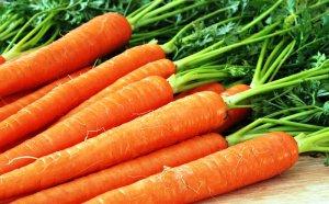 морковь для суставов
