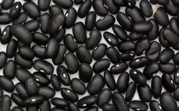 Черная фасоль особенности и полезные свойства