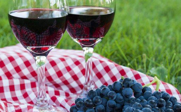 Чем полезен сорт винограда изабелла