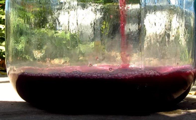 Вино - шаг 8