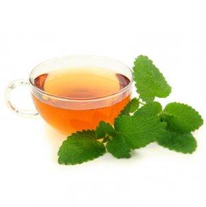 чай из мелиссы как правильно заварить