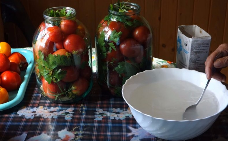 Как засолить помидоры в банках