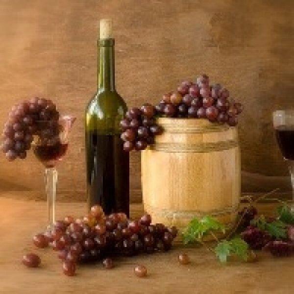 Самый лучший виноград для вина