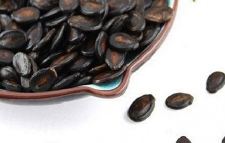 Жареные арбузные семечки