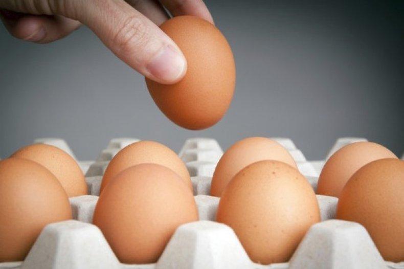 Теория плавания яйца