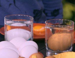 Как проверить свежесть яйца, опустив его в воду