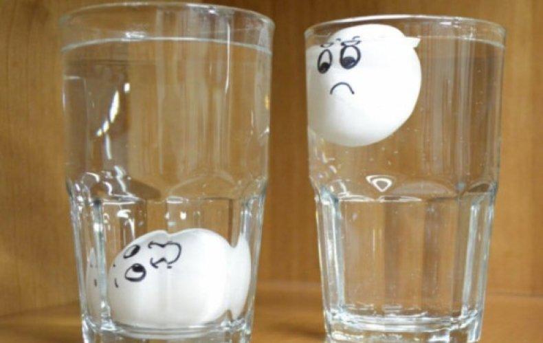 Какое яйцо зависает в воде