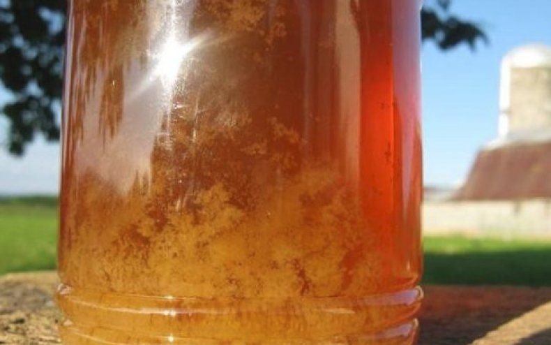 Жидкий и засахарившийся мед: отличия