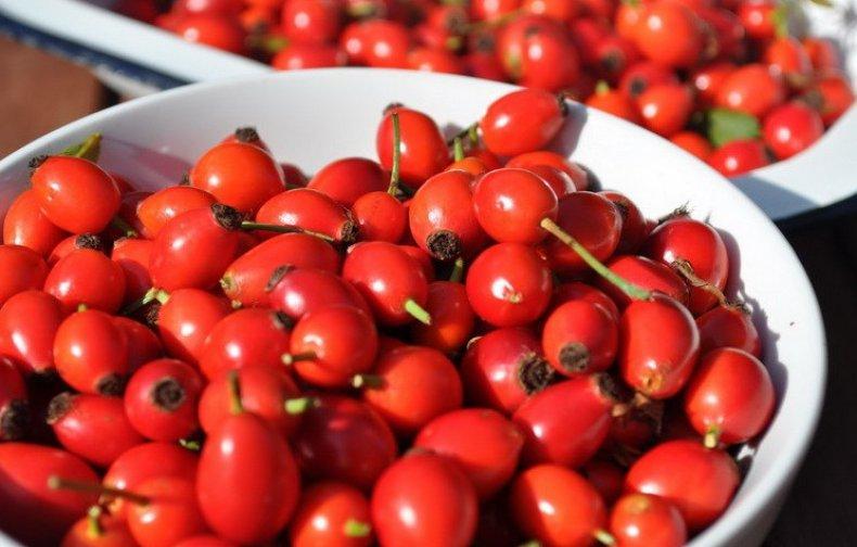 ягоды похожие на шиповник с косточками