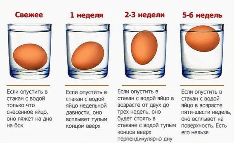 Проверка яйца на свежесть в воде