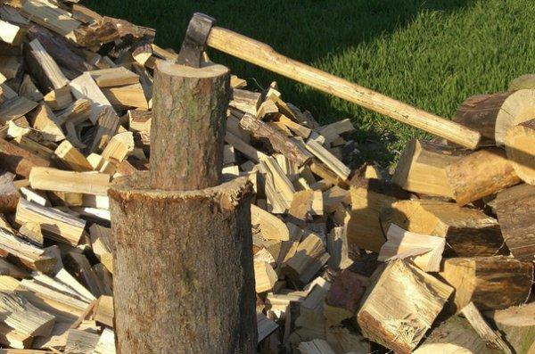 Какие дрова лучше всего подходят