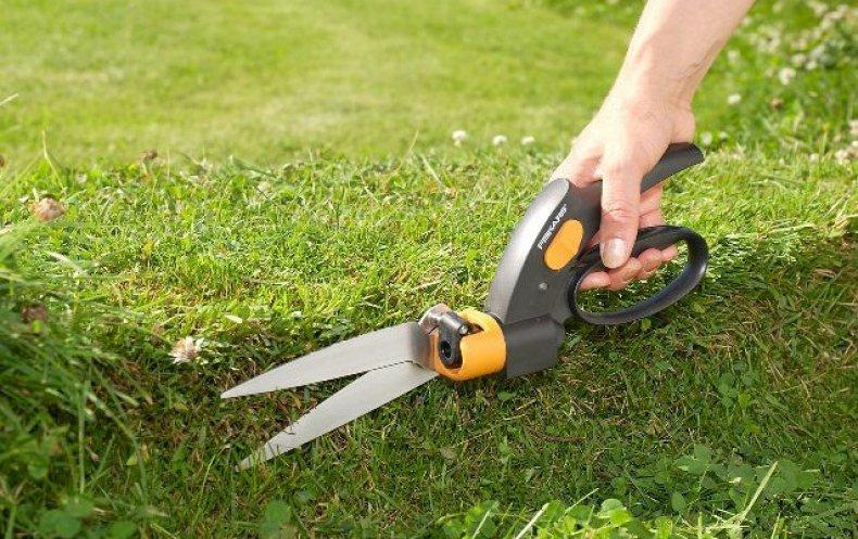 стрижка, газон, техник, ножницы, стричь