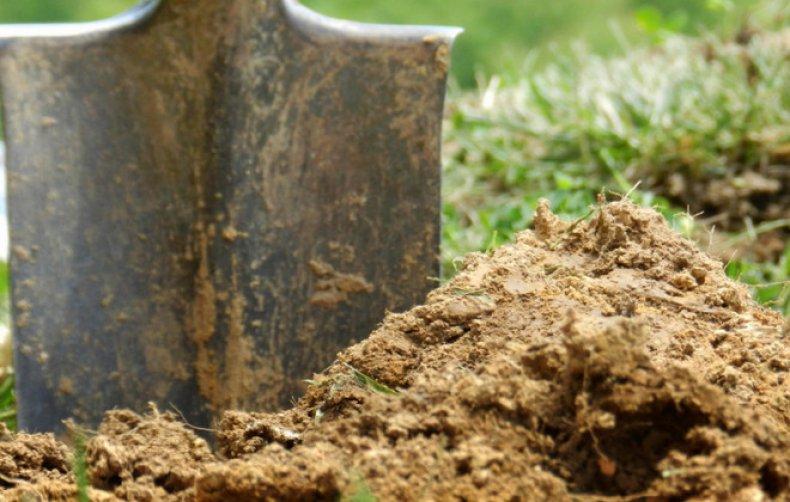 Почва и удобрение
