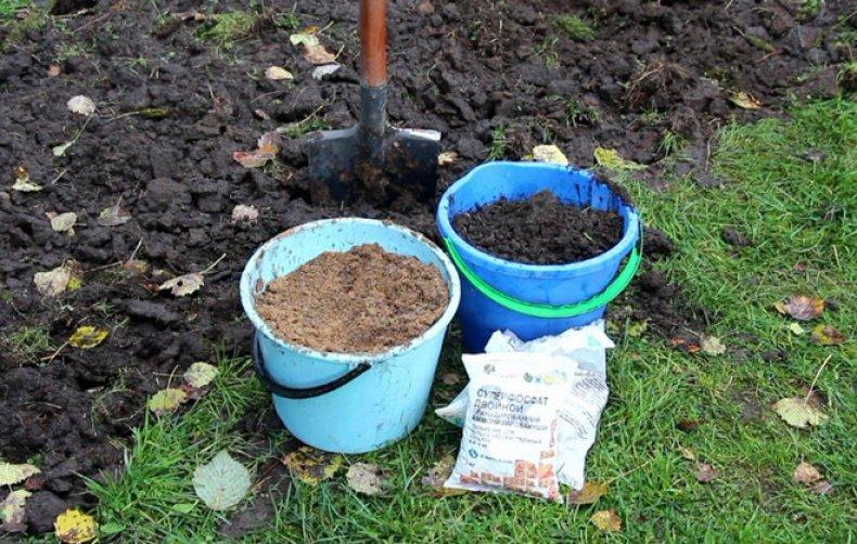 Почва и удобрения