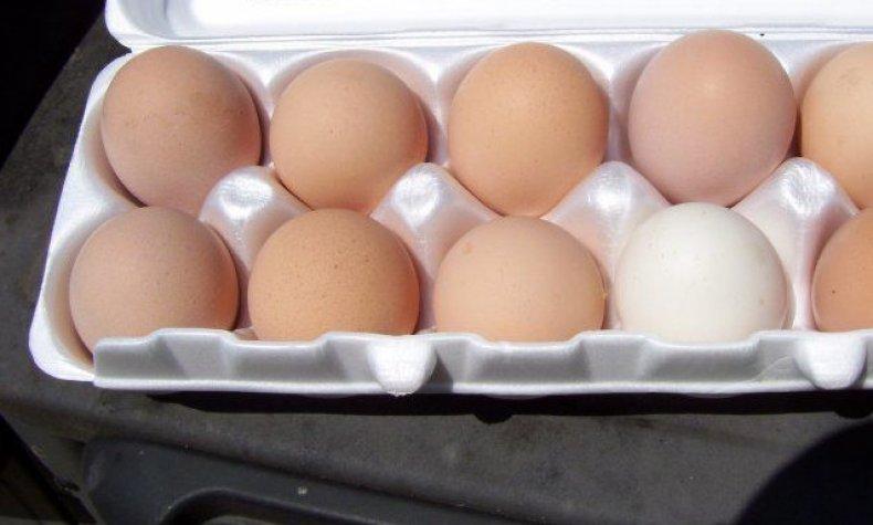 Яйца минорки