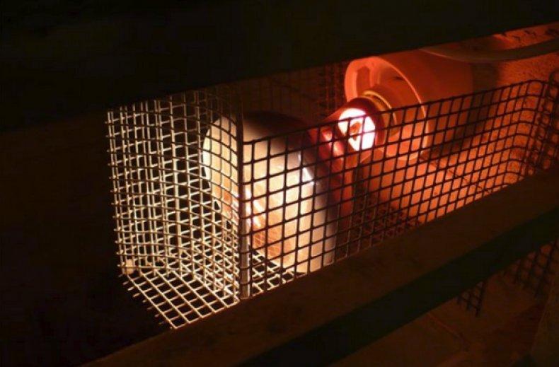 Лампы для обогрева курятника