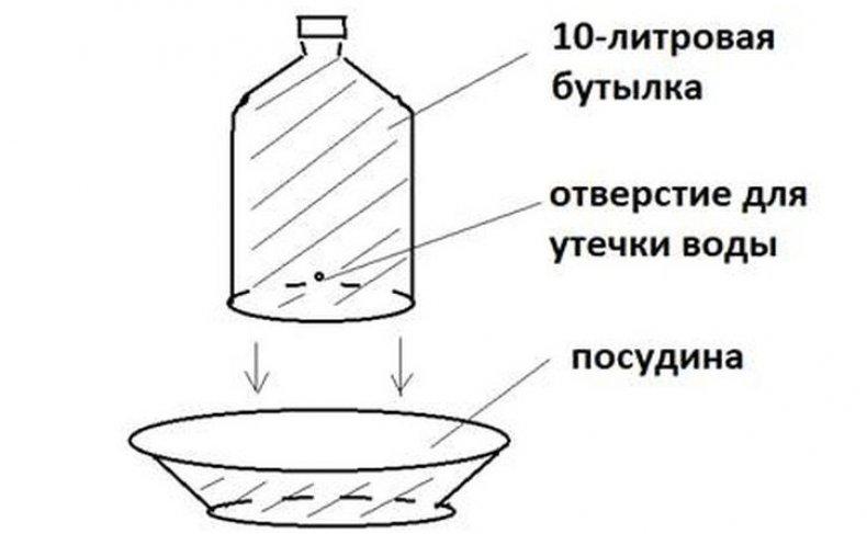 поилка, бутылка, 5-литровой бутылки, Материалы инструменты, шило канцелярский