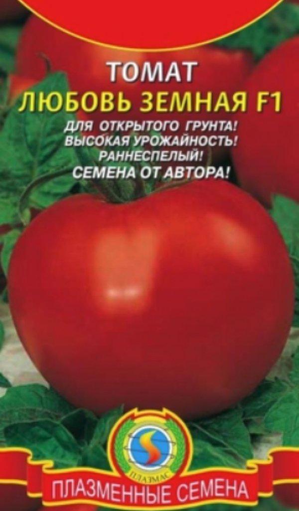 Подробное описание и характеристика томатов сорта любовь