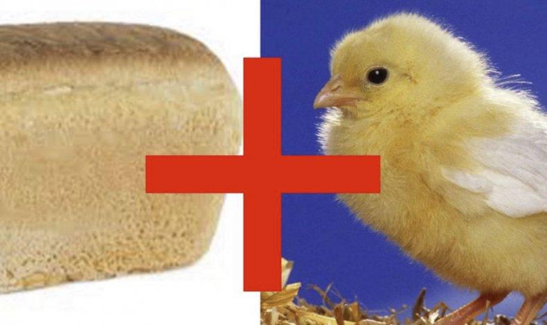 цыпленок, пшено, дрожжи, хлеб, продукт