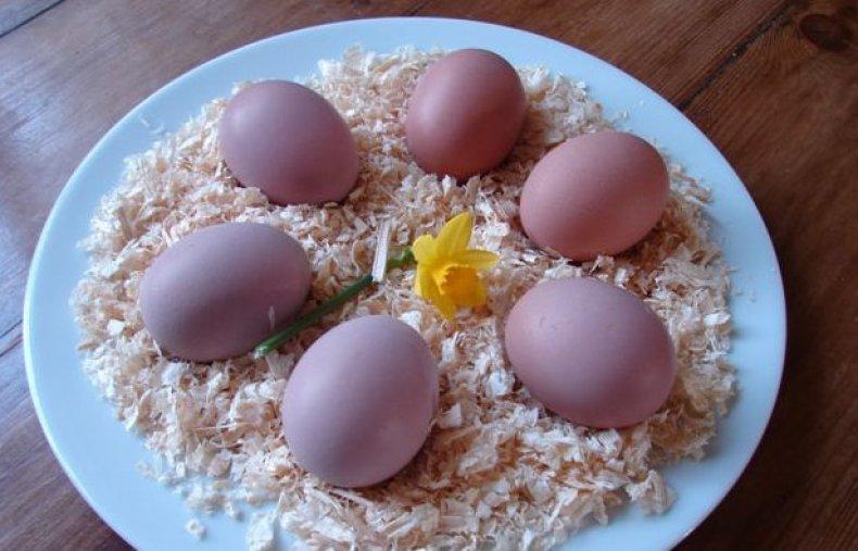 Яйца лангшанов