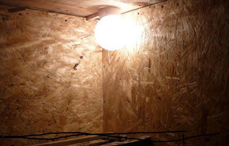 Лампа в плафоне в курятнике